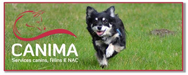 Canima - www.canima.net - contact