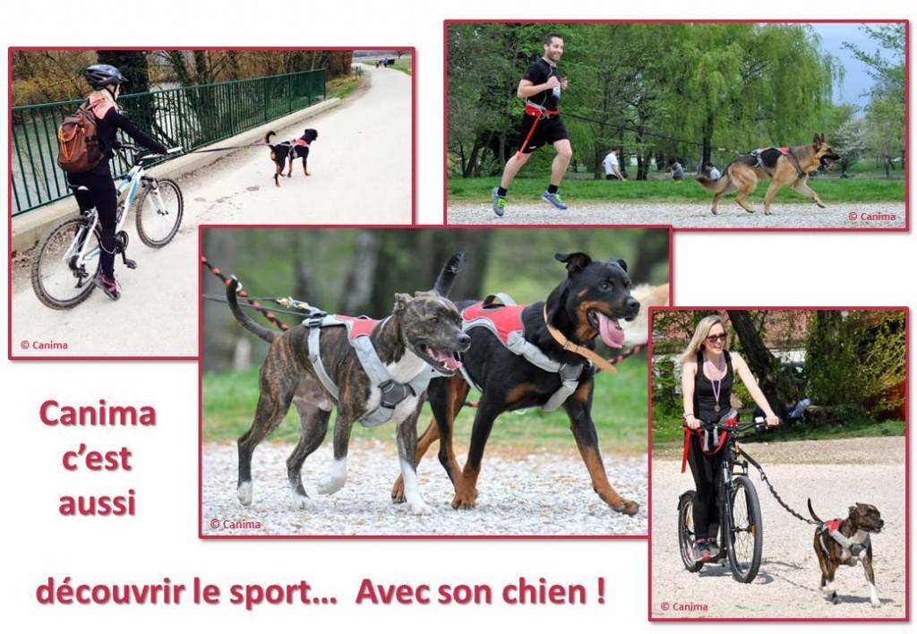 Canima - www.canima.net - sports canins